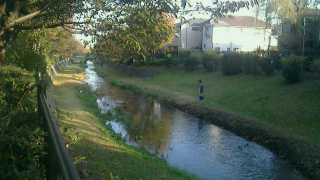 野川を走る