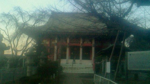 千葉寺参拝後に千葉駅近辺で旧交を暖める