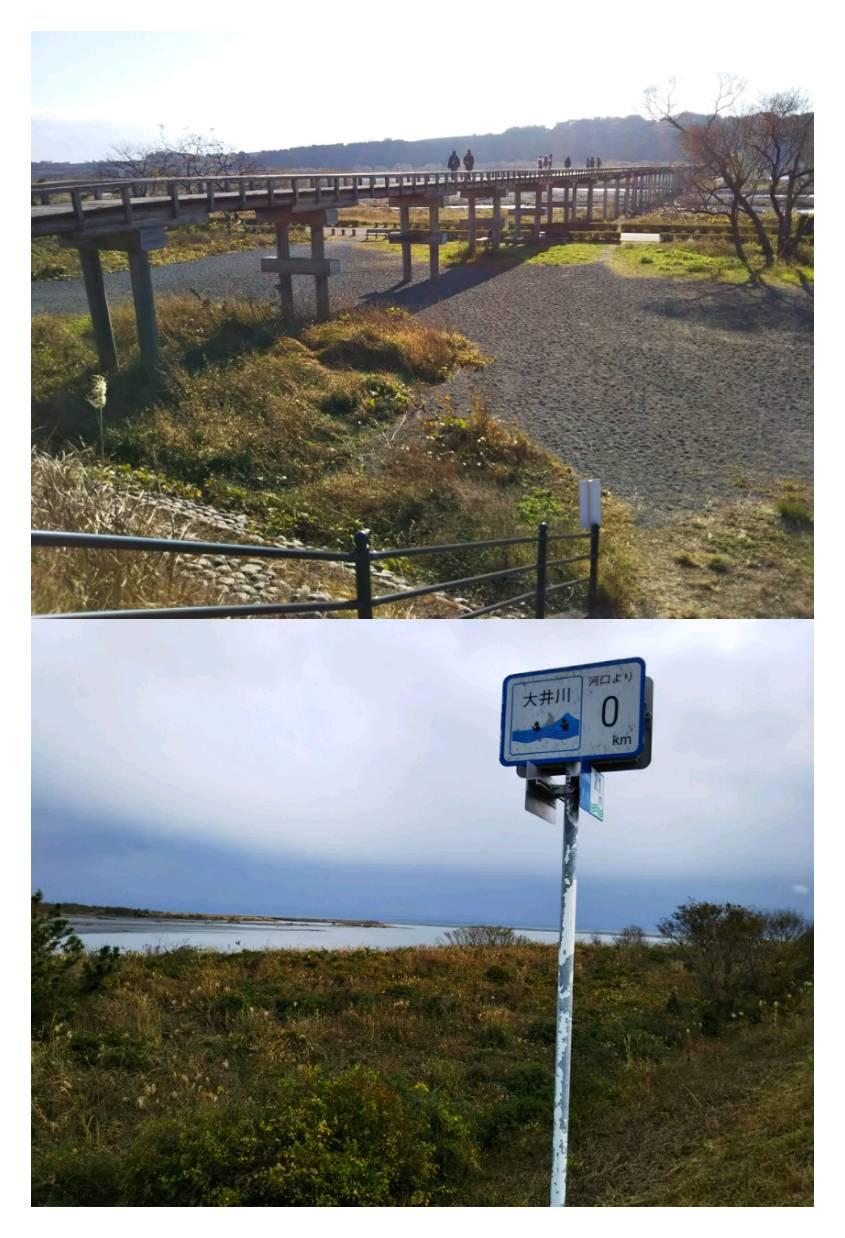 大井川ジョギング