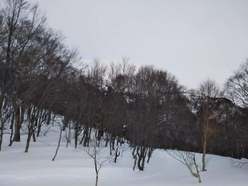 冬の鳩待峠